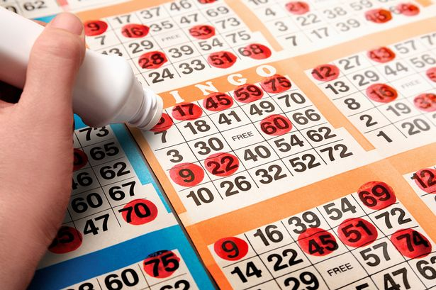 Playing Bingo can make You a Winner anytime!